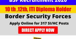BSF new vacancy 2020